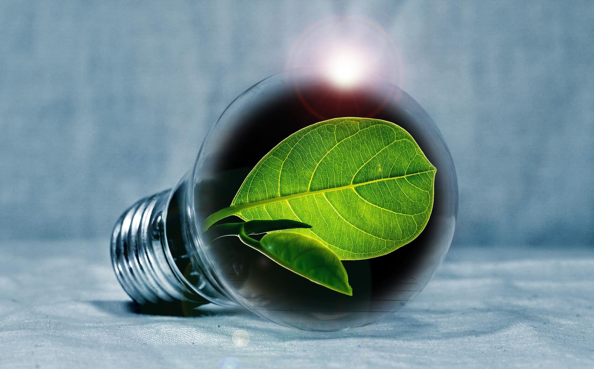développement durable GPK